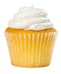 Vanilla Bean Cupcake Isolated