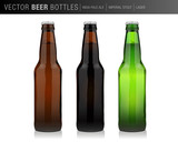 vector beer bottle