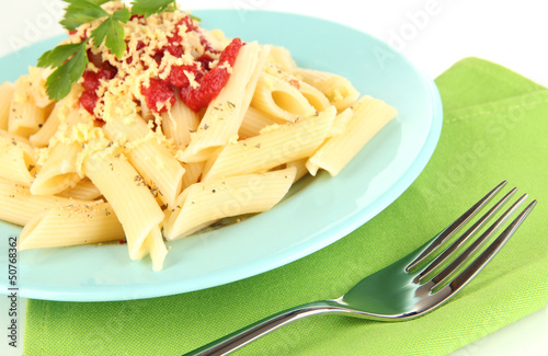 Rigatoni pasta dish with tomato sauce close up