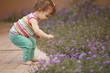 Beautiful baby girl having fun outdoors and picking flowers
