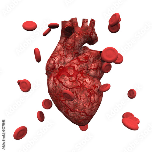 Human Heart and Blood Cells