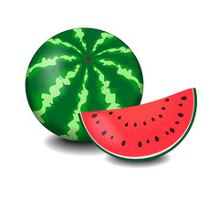 Watermelon and slice isolated on white, vector illustration
