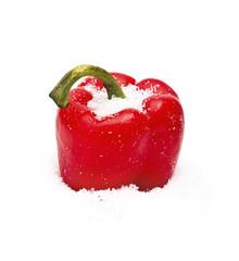 Pepper on snow