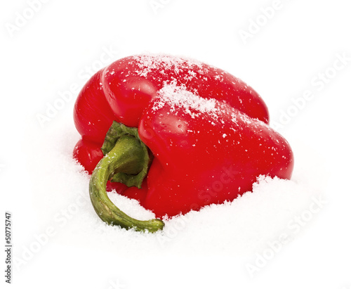 Pepper on snow