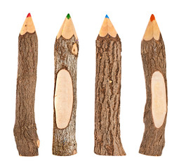 set of pencils stylized tree branch. isolated on the white