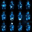 Human anatomy abstract design