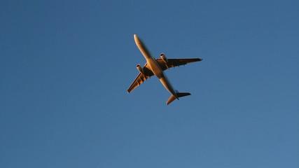 Golden jet. Morning flight.