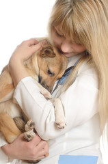 kind woman veterinarian, hugging a puppy