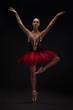 beautiful woman ballet dancer