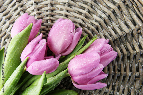 Beautiful bouquet of purple tulips, on grey wicker background