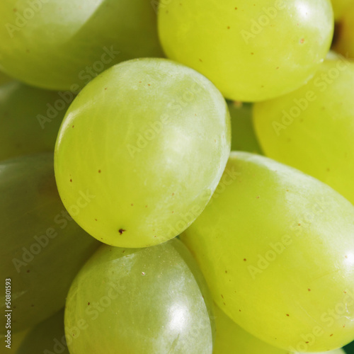 bunch of grapes © zwiebackesser