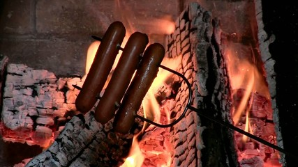 Roasting Hotdogs