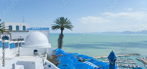 Foto op Canvas Tunesië Tunis, Tunisia