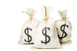 Bags full of money isolated in a white background