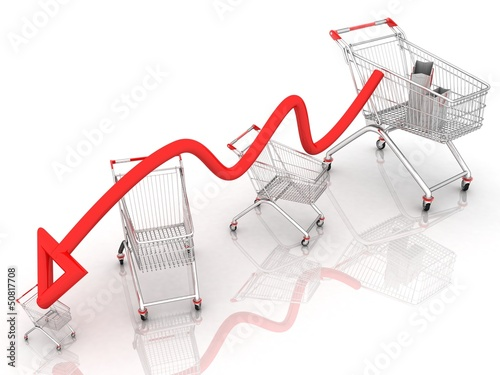 (packages for shopping,for shopping cart)schedule of purchases