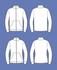 Vector illustration of men's and women's sport jumpers