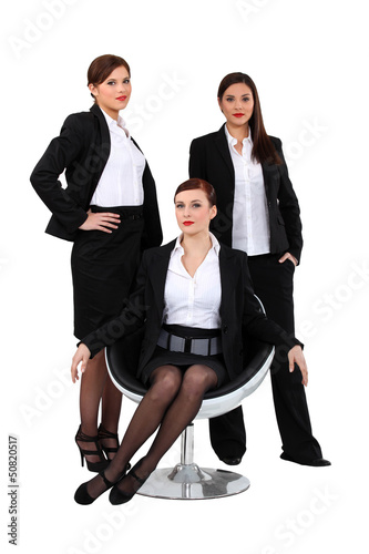 Businesswomen posing together