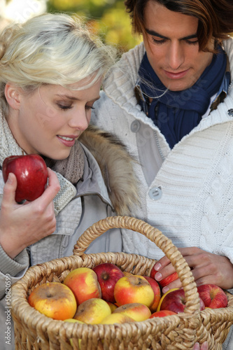 Couple picking apples