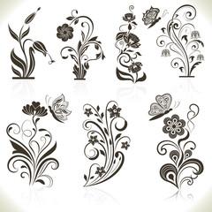 Floral flower vector design elements