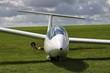 Segelflugzeug auf Wiese - 50831913
