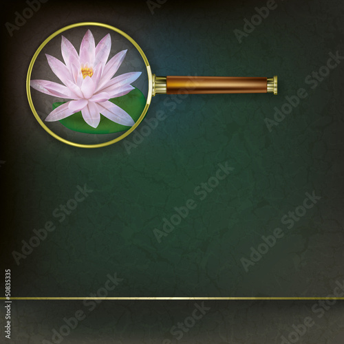 abstract floral background with Magnifying glass and lotus