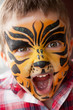 Boy with a tiger make-up