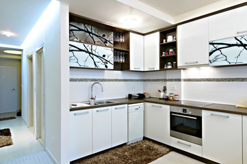 contemporary white kitchen interior