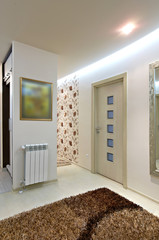 modern home antechamber