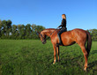 Vacation Lifestyles- Unsaddle Horseback Riding at Sunset