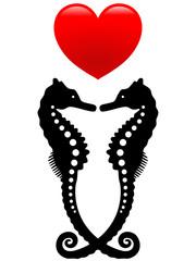 Gepunktetes Seepferdchenpaar mit Herz – Vektor und freigestellt