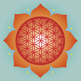Sacred geometry Flower of life-vector illustration