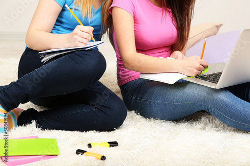 Two girl friends with with laptop on room