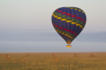 safari in mongolfiera