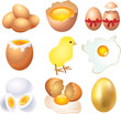 eggs photo-realistic vector set