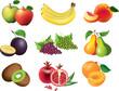fruits photo-realistic vector set