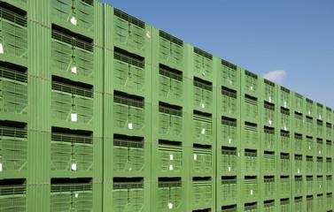Green Fruit packing crates
