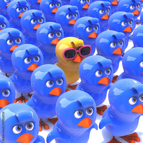 Crowd of bluebirds with yellow intruder