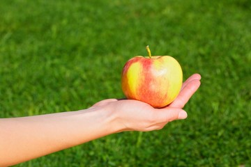 Hand of a young woman held an apple.