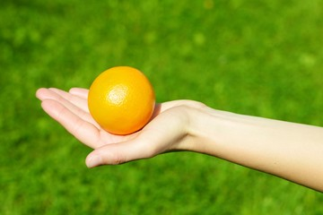 Orange held by a young woman