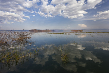 Baringo Lake, Kenya