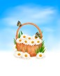 Natire  background with summer flowers in basket and butterfly o