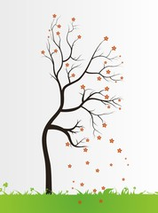 tree with color leaves on white background
