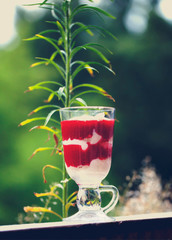 Tasty strawberry dessert tiramisu