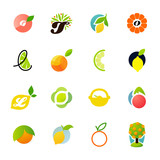 Citrus family - lemon, orange, lime, tangerine. Vector logos