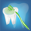 tooth design element. vector mesh illustration