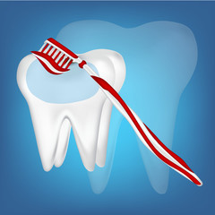 toothbrush, tooth design element. vector mesh illustration