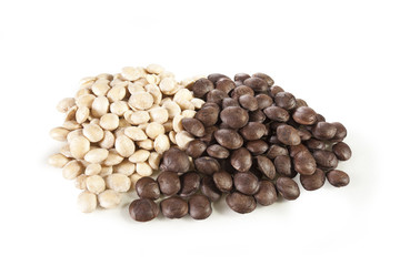 Sacha-Inchi peanut, white and brown seeds called sacha-Inchi