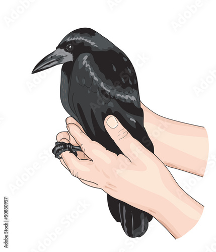 The Crow and the hands.