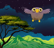 An owl flying in the middle of the night