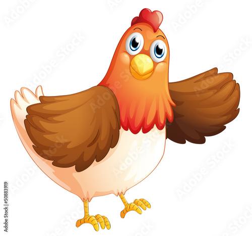 Foto op Canvas Boerderij A fat hen